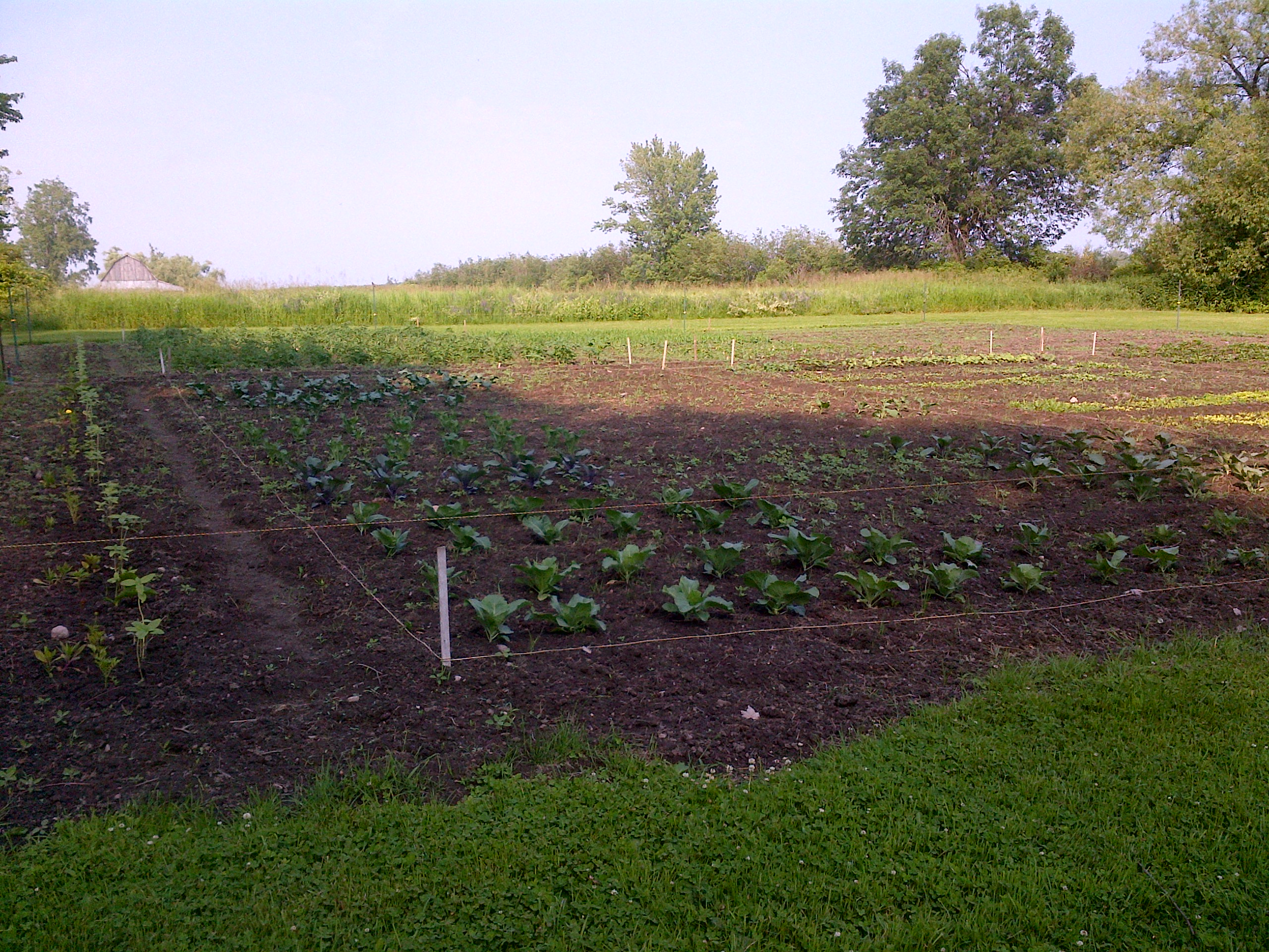 2014 Growing Season