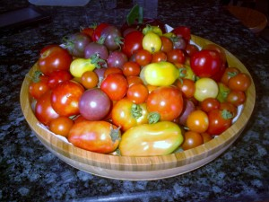 Heirloom cherry tomatoes; with some San Marzanos around the edges.